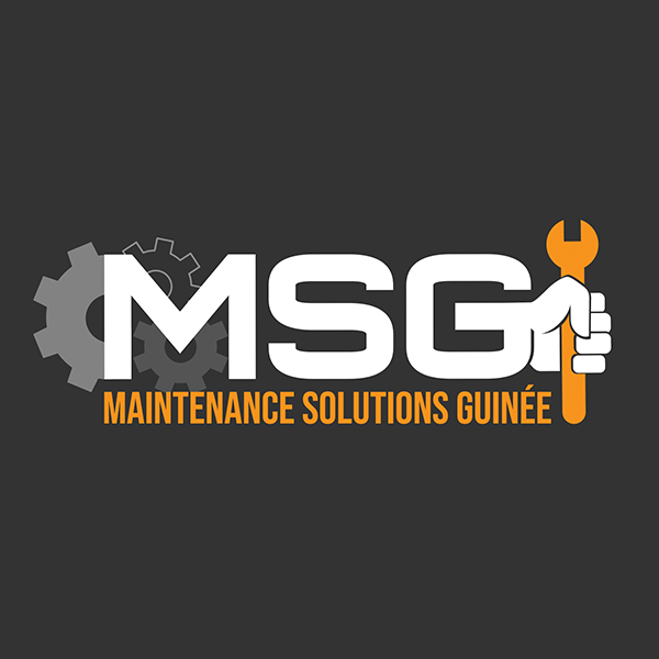 Maintenance Solutions Guinee